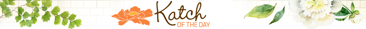 Katch_Blog_header